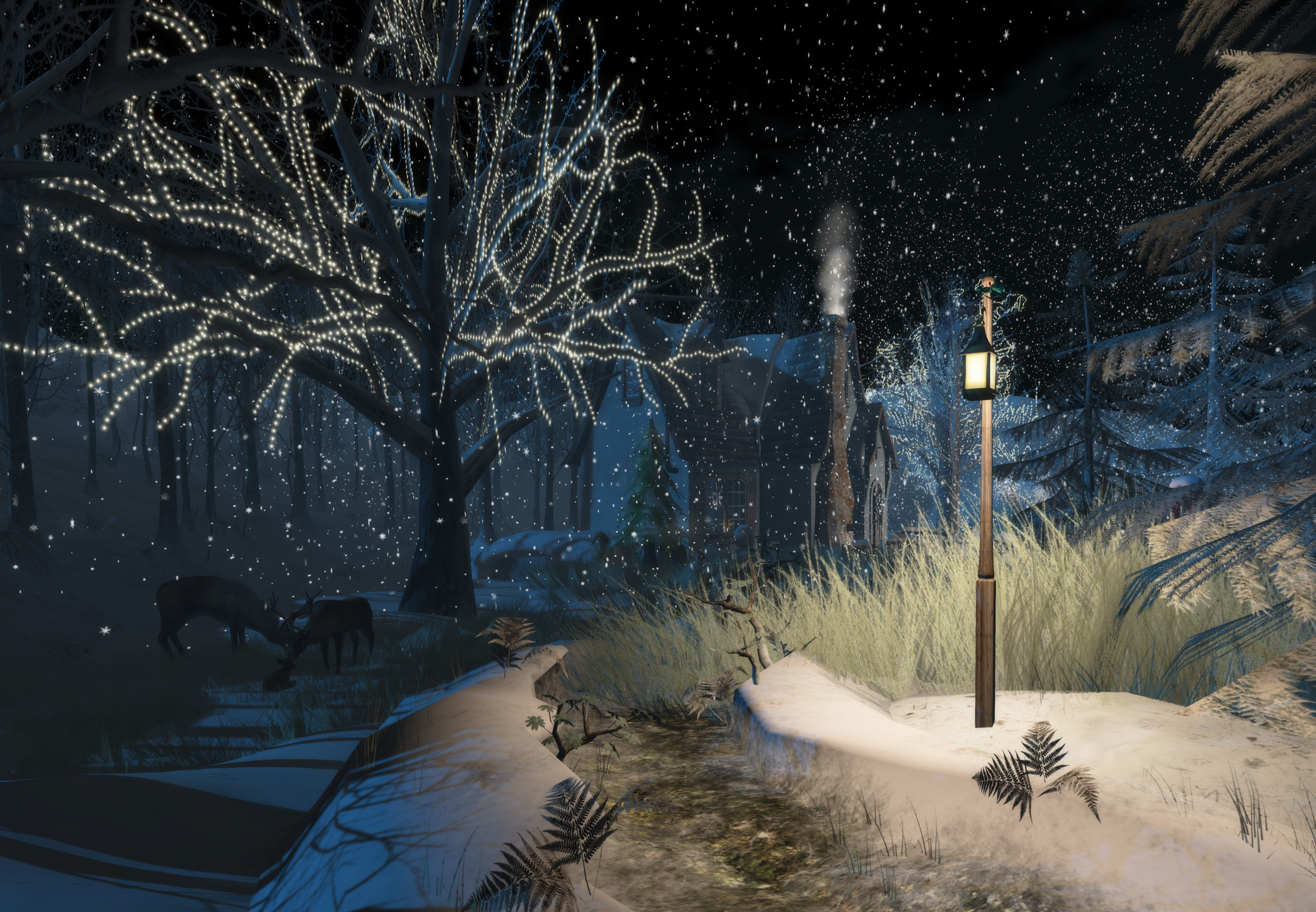 winterland22